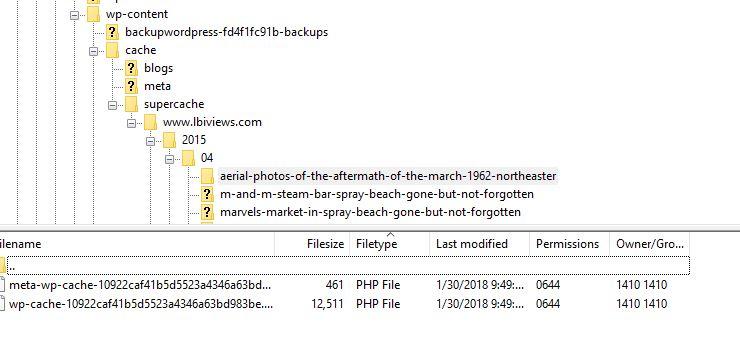 WP Super Cache files in FTP