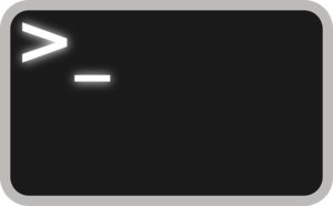 Why commands are missing from the bash command history.
